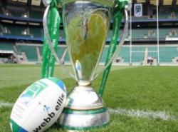 Parier H Cup